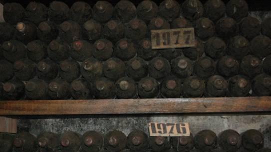 Amare l'Amaro Amarone: A Journey into Valpolicella