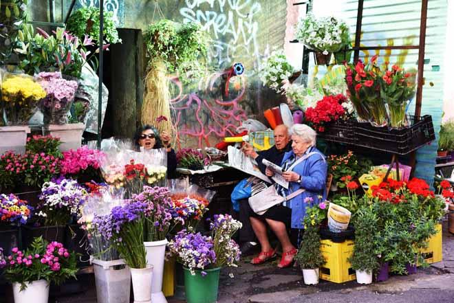 Rome Flowers