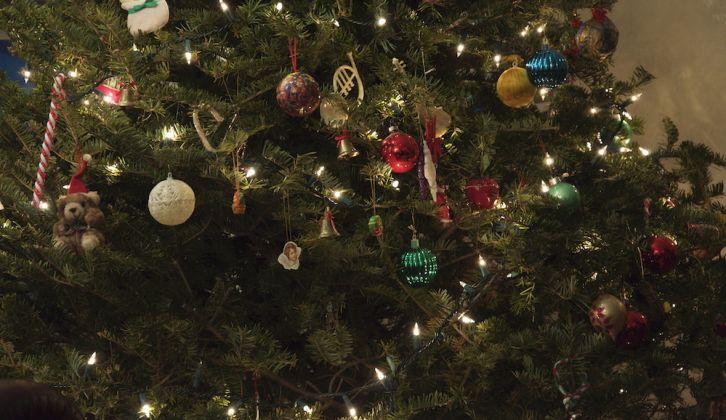 DSC_0254-Christmas-Tree.jpg