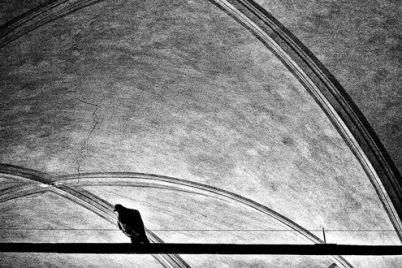 Il-piccione-sta-pensando.jpg