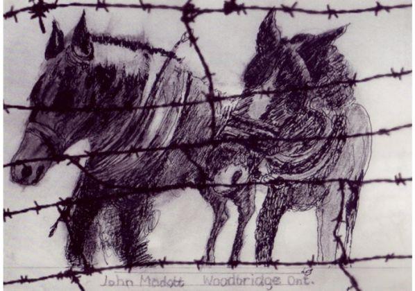 Madott-Horses-1.jpg