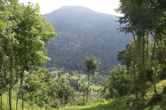 Mountain_Claudia.jpg