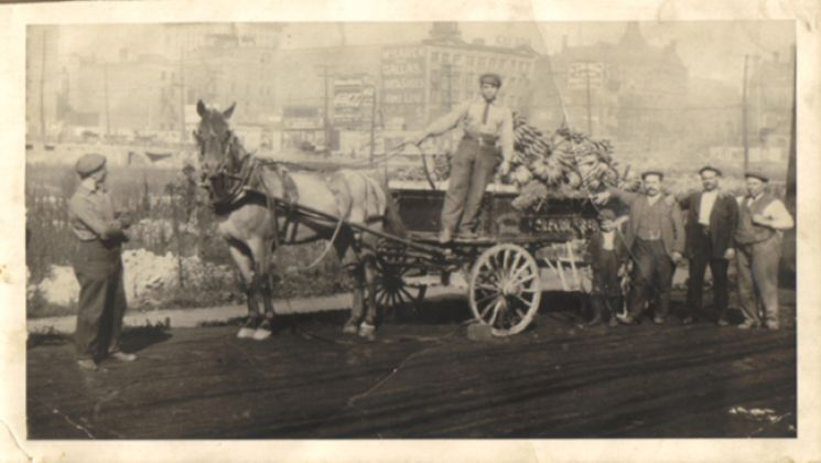 Restivo-horse-and-buggy.jpg