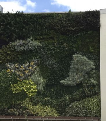 Vertical-Garden-Complesso-Aldo-Moro.jpg